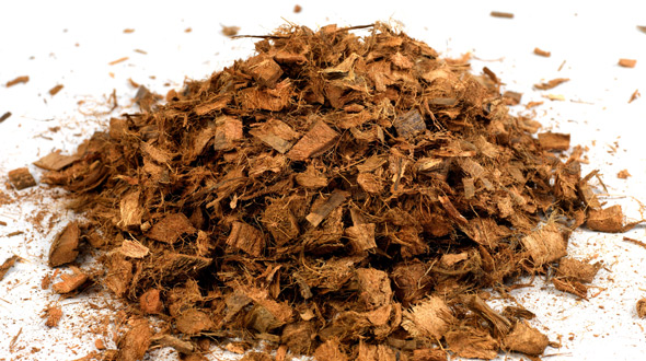 Tree mulch organic material wood chips